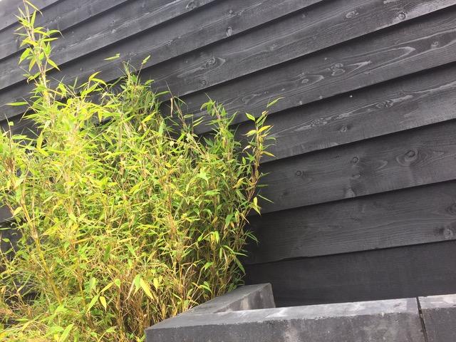 potdekselplanken-zweeds-rabat-hardhout